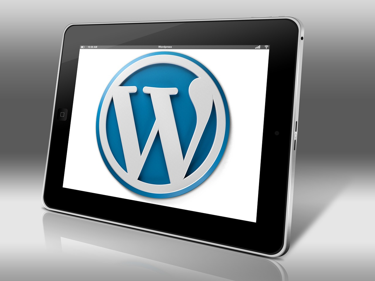 wordpress, blog, construire business